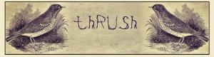 Thrush Poetry Journal